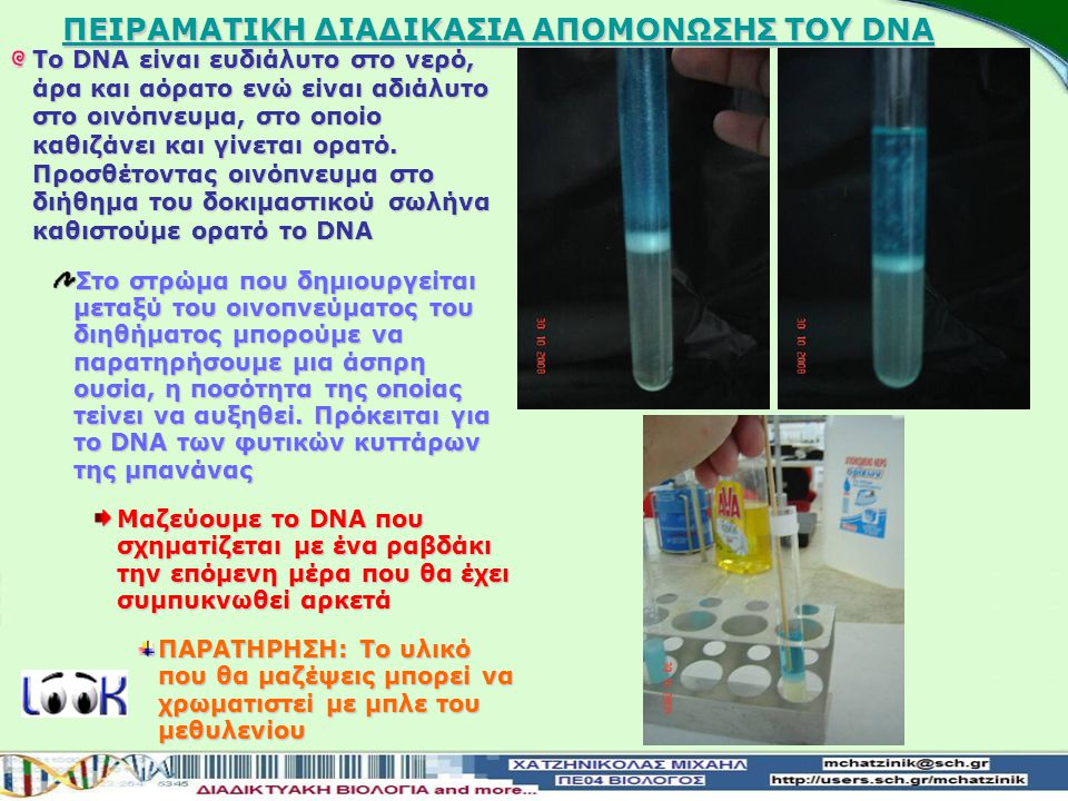 ΠΕΙΡΑΜΑΤΙΚΗ ΔΙΑΔΙΚΑΣΙΑ ΑΠΟΜΟΝΩΣΗΣ ΤΟΥ DNA