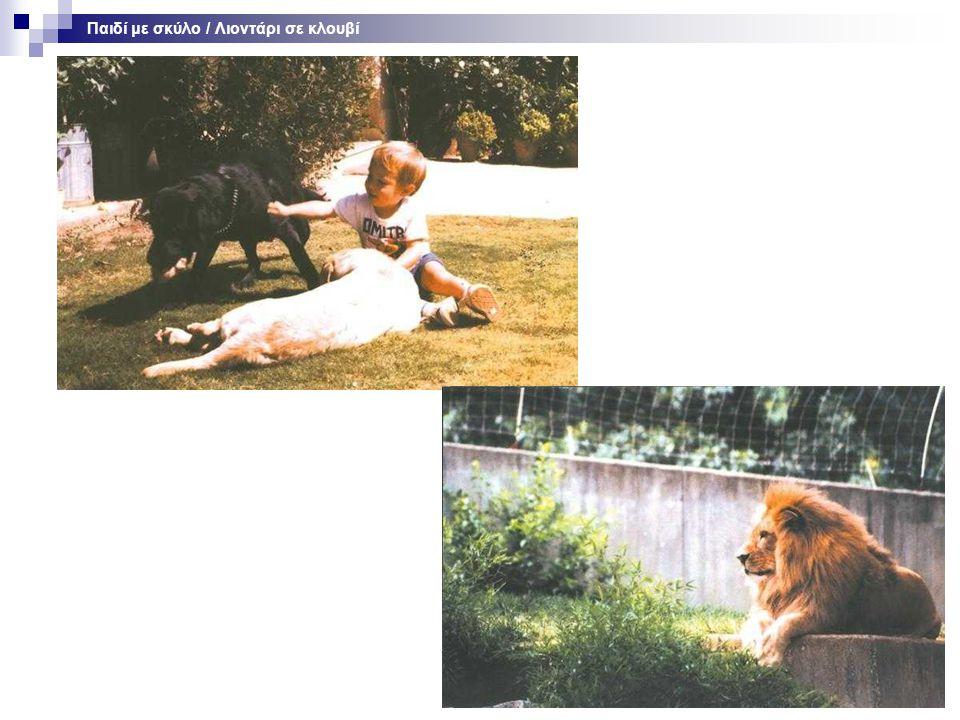 Παιδί με σκύλο / Λιοντάρι σε κλουβί