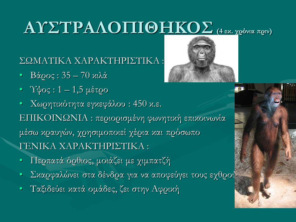 ΑΥΣΤΡΑΛΟΠΙΘΗΚΟΣ (4 εκ. χρόνια πριν)