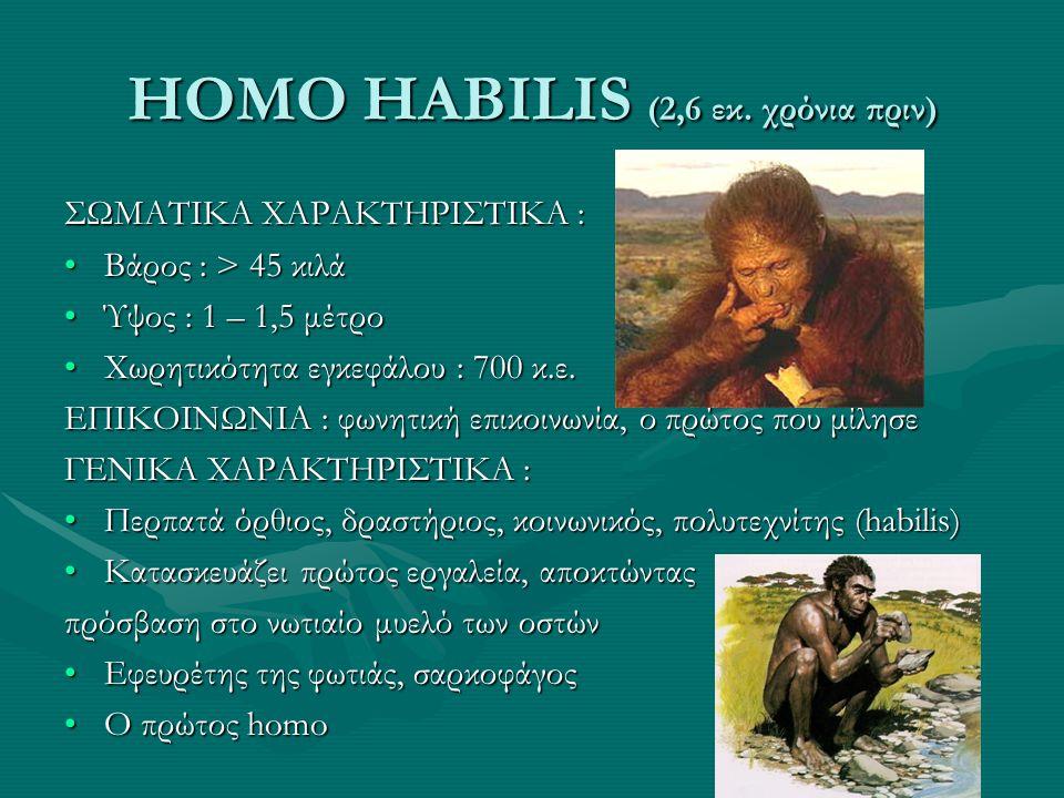 HOMO HABILIS (2,6 εκ. χρόνια πριν)