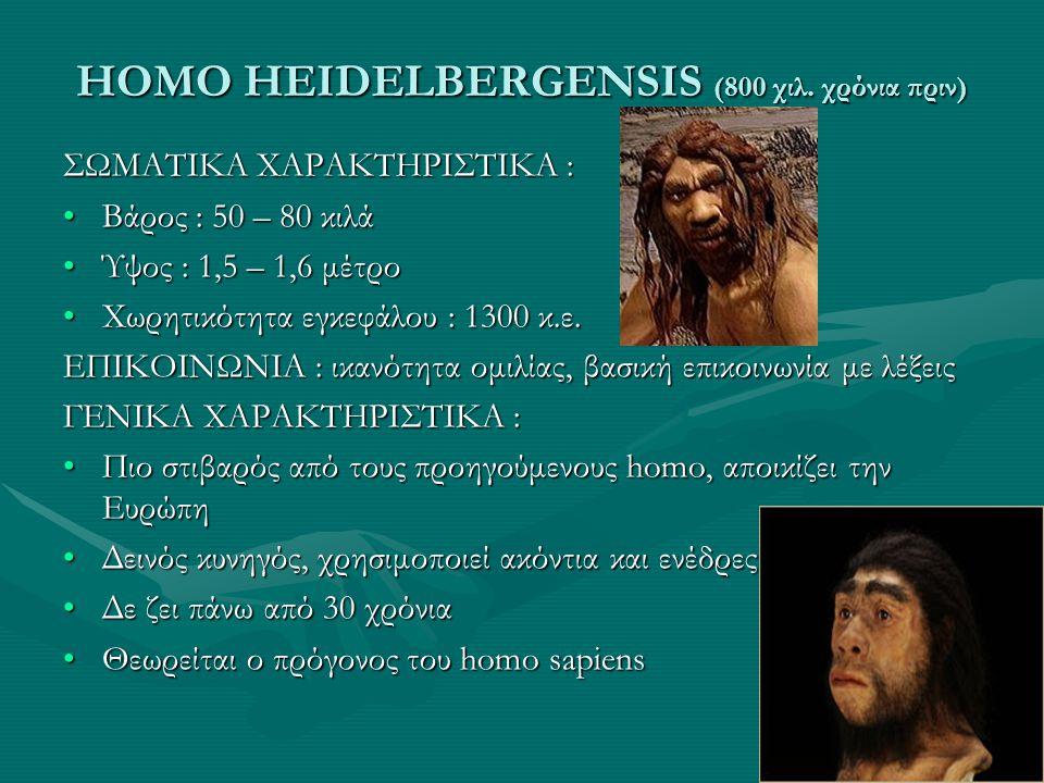 HOMO HEIDELBERGENSIS (800 χιλ. χρόνια πριν)