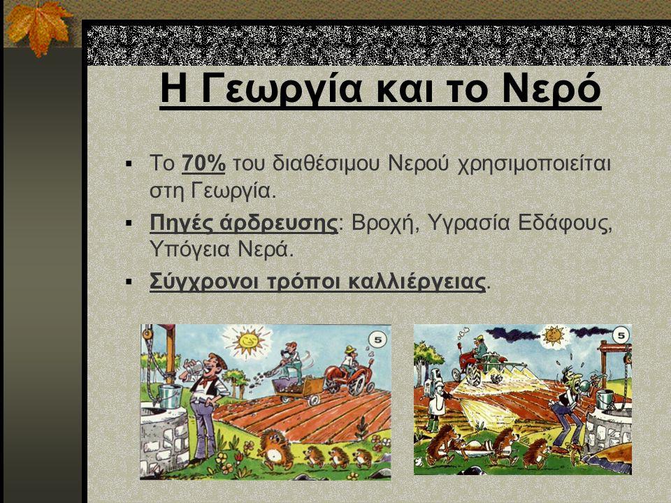 Η Γεωργία και το Νερό Το 70% του διαθέσιμου Νερού χρησιμοποιείται στη Γεωργία. Πηγές άρδρευσης: Βροχή, Υγρασία Εδάφους, Υπόγεια Νερά.
