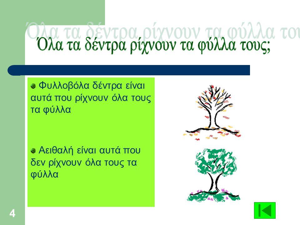 Όλα τα δέντρα ρίχνουν τα φύλλα τους;