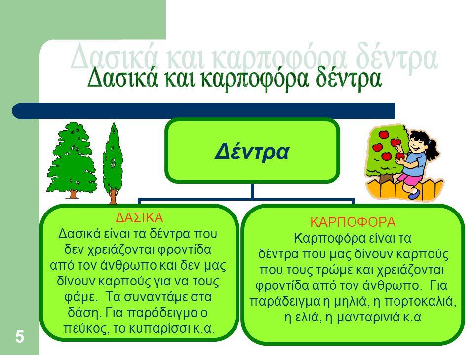 Δασικά και καρποφόρα δέντρα