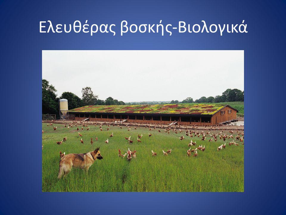 Ελευθέρας βοσκής-Βιολογικά