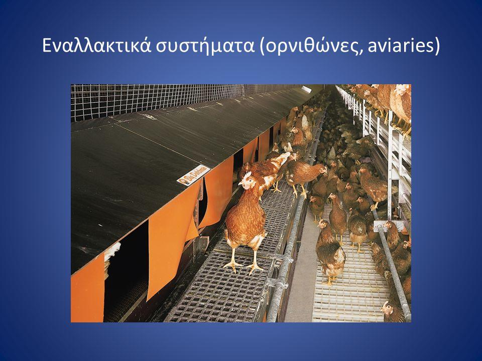 Εναλλακτικά συστήματα (ορνιθώνες, aviaries)
