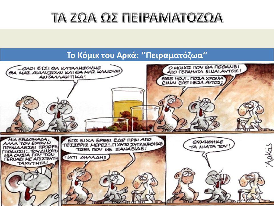 Το Κόμικ του Αρκά: ''Πειραματόζωα''
