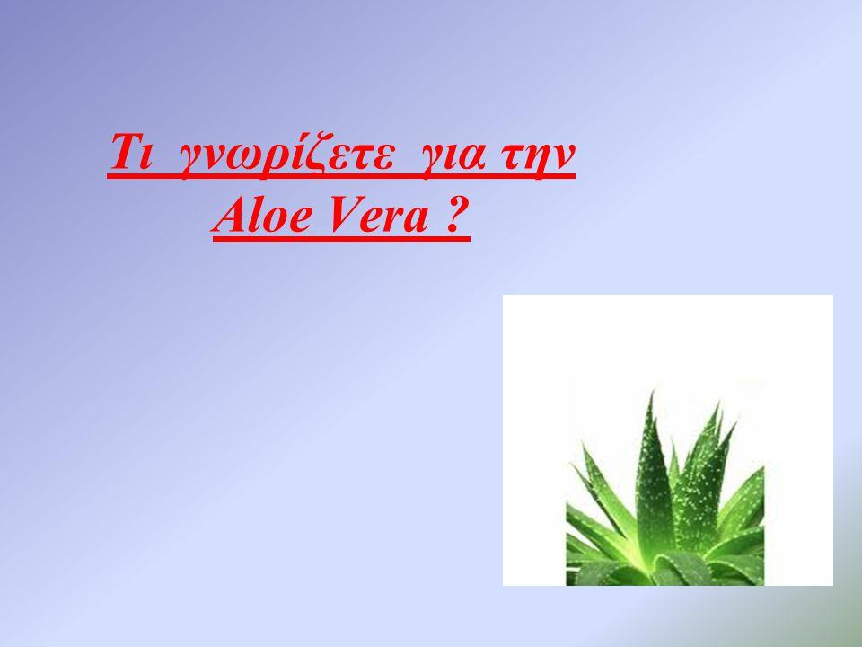 Τι γνωρίζετε για την Aloe Vera