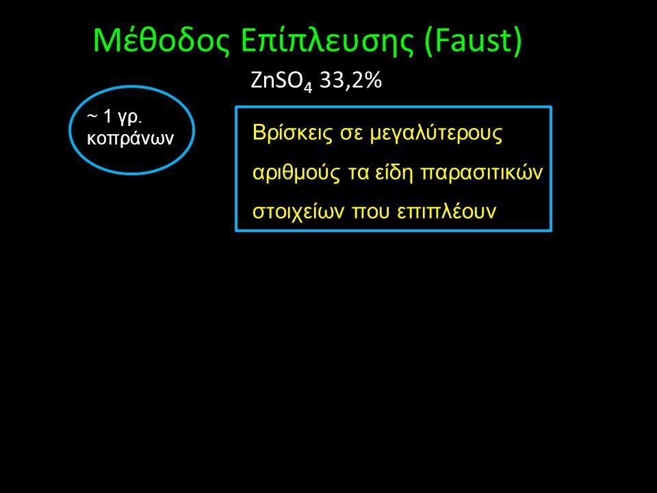Μέθοδος Eπίπλευσης (Faust)