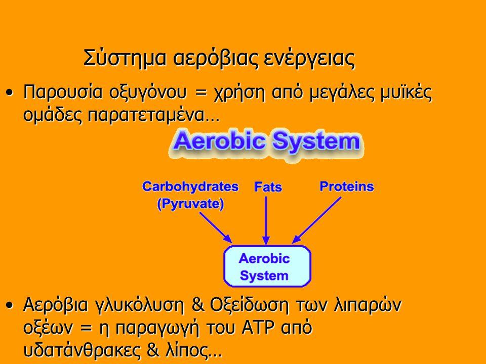 Σύστημα αερόβιας ενέργειας