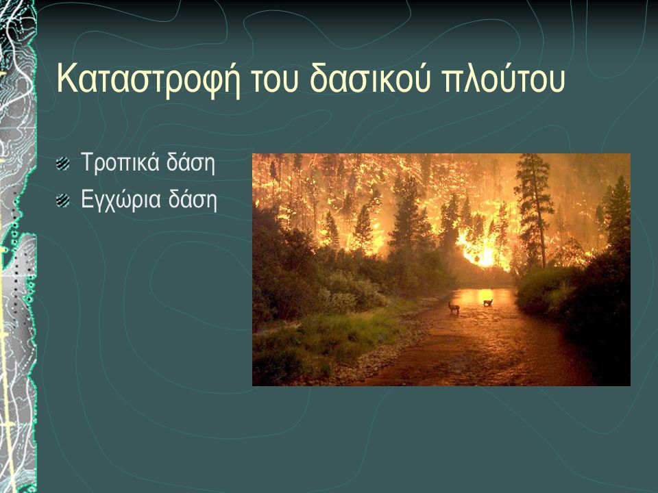 Καταστροφή του δασικού πλούτου