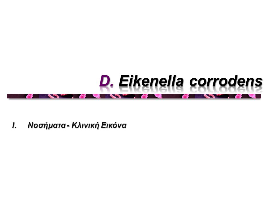 D. Eikenella corrodens Νοσήματα - Κλινική Εικόνα