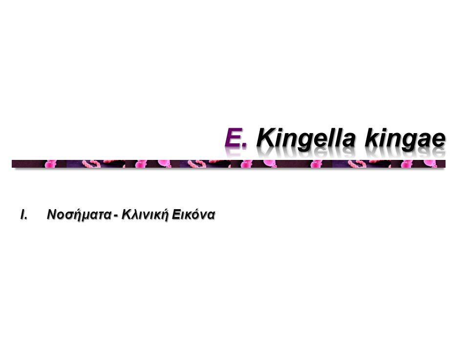 E. Kingella kingae Νοσήματα - Κλινική Εικόνα