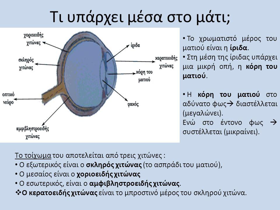 Τι υπάρχει μέσα στο μάτι;