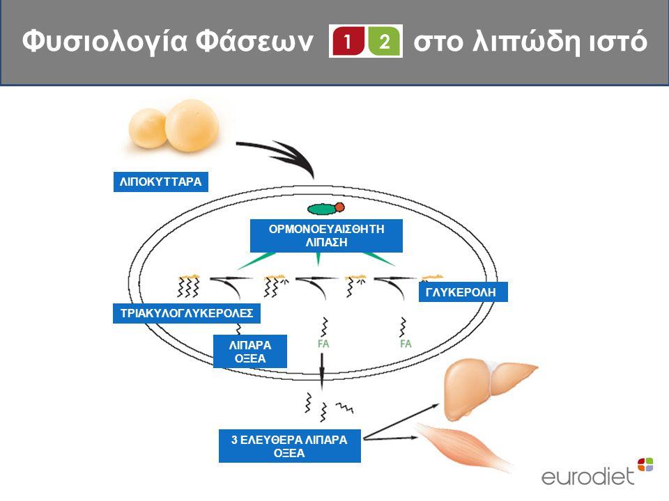 Φυσιολογία Φάσεων στο λιπώδη ιστό ΟΡΜΟΝΟΕΥΑΙΣΘΗΤΗ ΛΙΠΑΣΗ