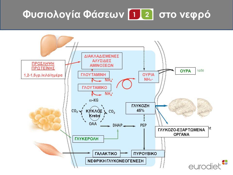 Φυσιολογία Φάσεων στο νεφρό