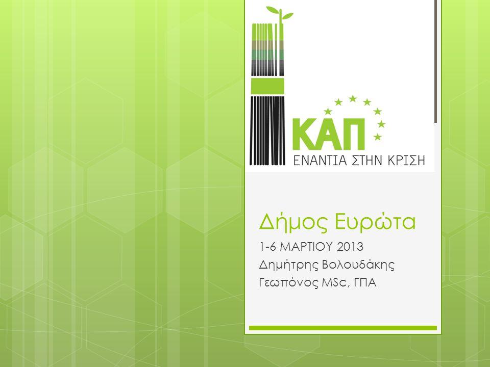 1-6 ΜΑΡΤΙΟΥ 2013 Δημήτρης Βολουδάκης Γεωπόνος MSc, ΓΠΑ
