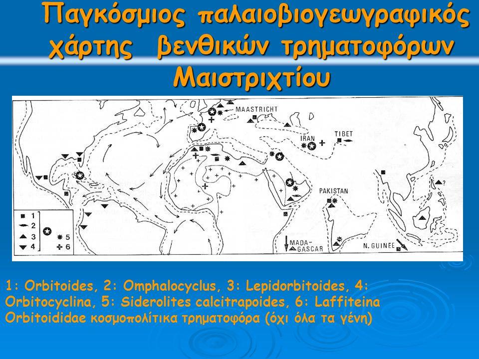Παγκόσμιος παλαιοβιογεωγραφικός χάρτης βενθικών τρηματοφόρων Μαιστριχτίου