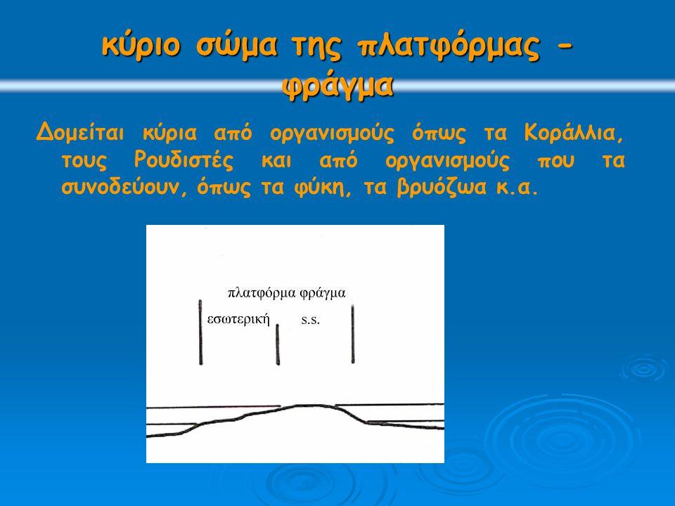 κύριο σώμα της πλατφόρμας - φράγμα
