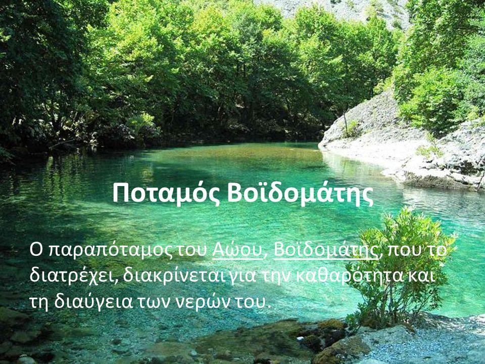 Ο παραπόταμος του Αώου, Βοϊδομάτης, που το διατρέχει, διακρίνεται για την καθαρότητα και τη διαύγεια των νερών του.