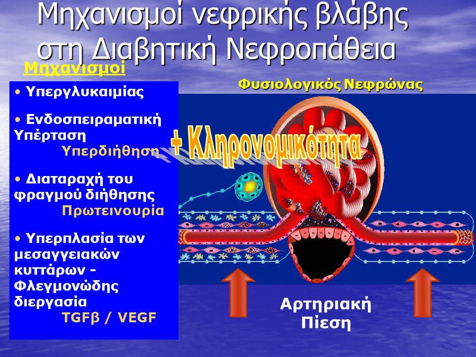 Μηχανισμοί νεφρικής βλάβης στη Διαβητική Νεφροπάθεια