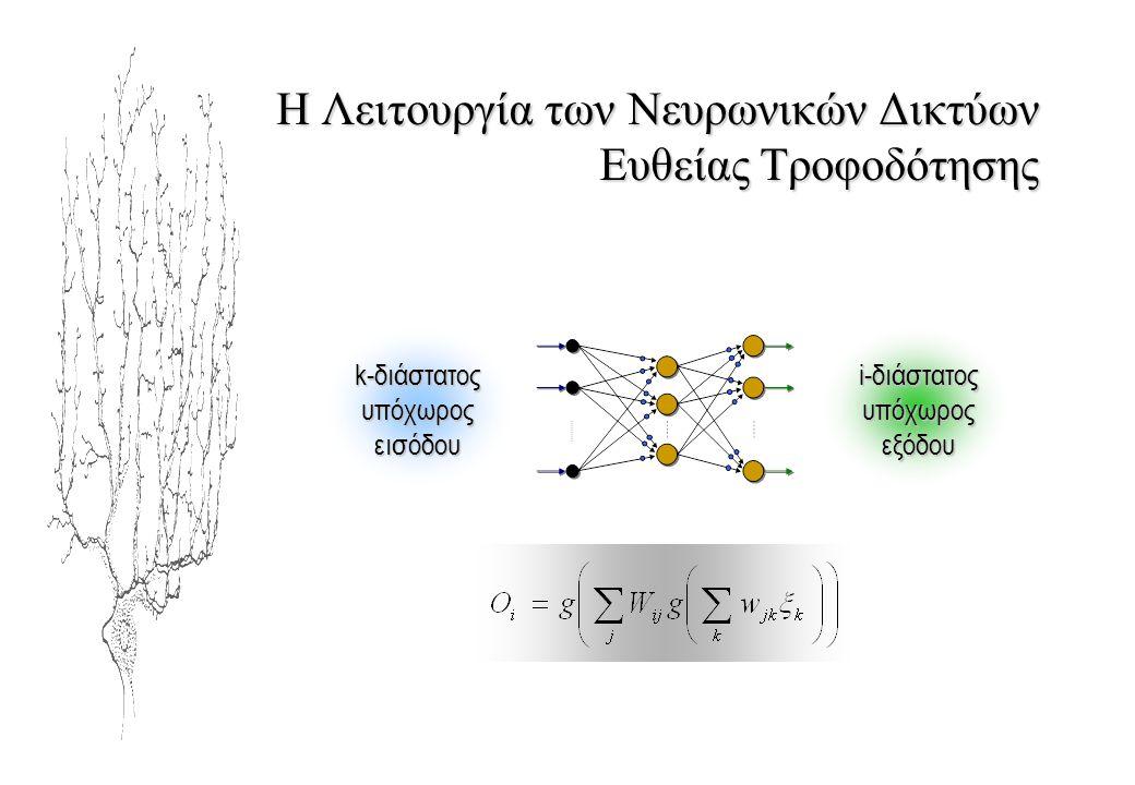 Η Λειτουργία των Νευρωνικών Δικτύων Ευθείας Τροφοδότησης