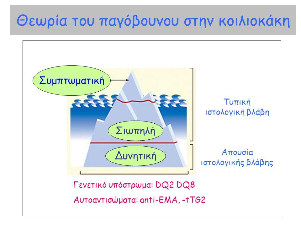 Θεωρία του παγόβουνου στην κοιλιοκάκη