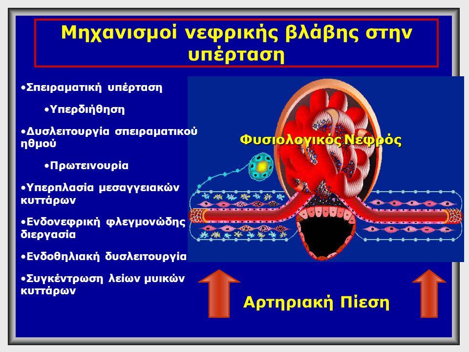 Μηχανισμοί νεφρικής βλάβης στην υπέρταση
