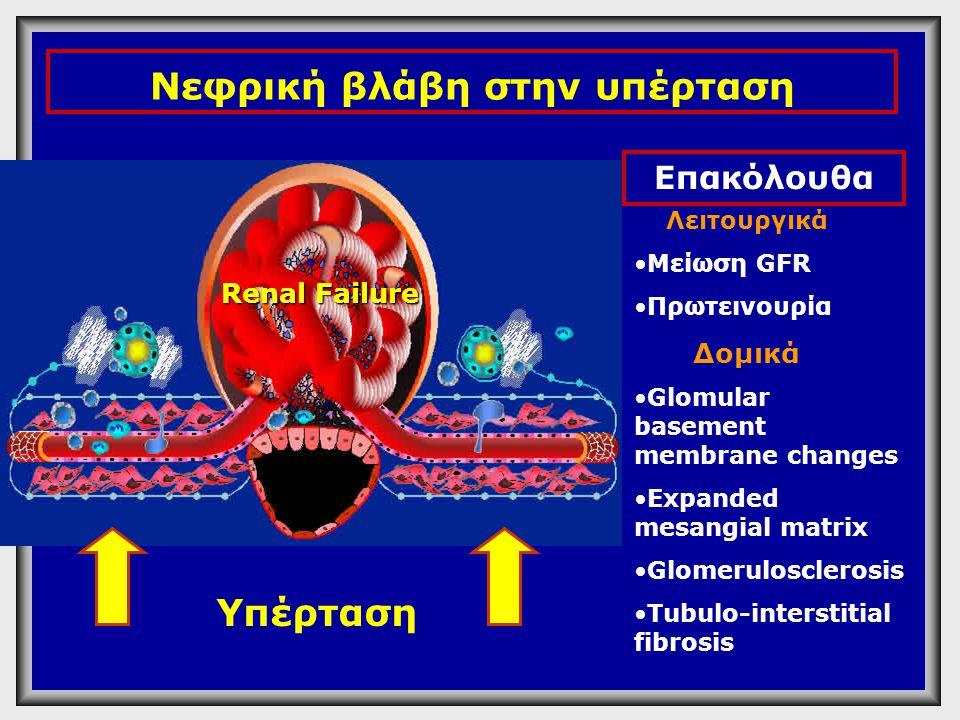 Νεφρική βλάβη στην υπέρταση
