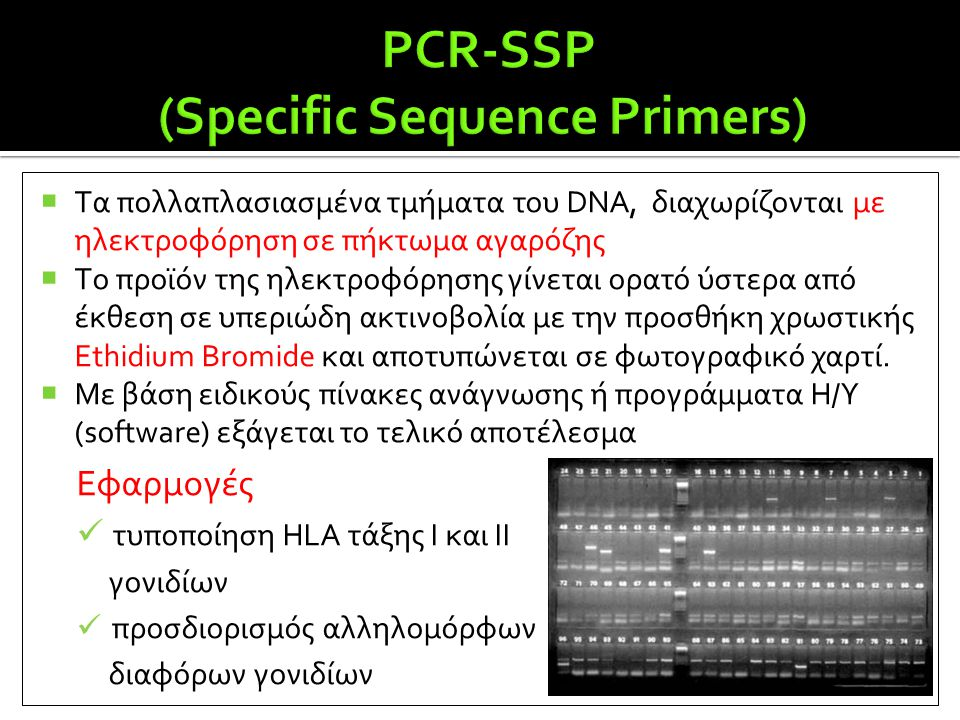 PCR-SSP (Specific Sequence Primers)