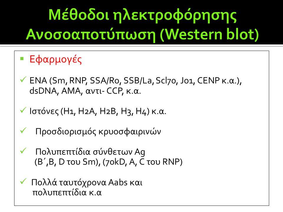 Μέθοδοι ηλεκτροφόρησης Ανοσοαποτύπωση (Western blot)