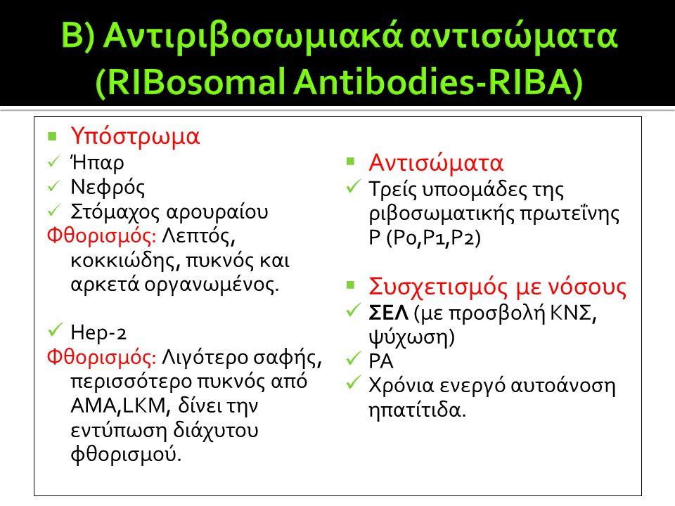B) Αντιριβοσωμιακά αντισώματα (RIBosomal Antibodies-RIBA)