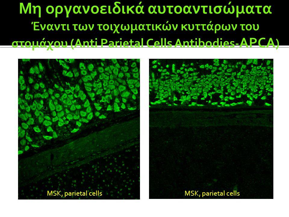 Μη οργανοειδικά αυτοαντισώματα Έναντι των τοιχωματικών κυττάρων του στομάχου (Anti Parietal Cells Antibodies-APCA)