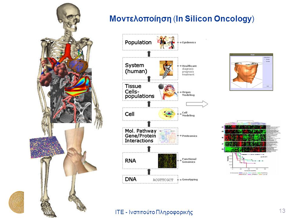 Μοντελοποίηση (In Silicon Oncology)
