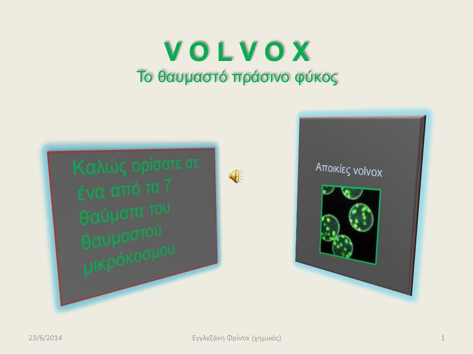 V O L V O X Το θαυμαστό πράσινο φύκος