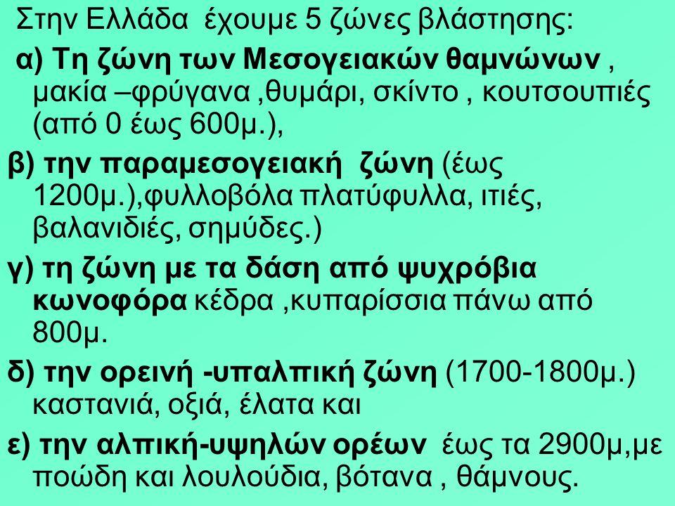 Στην Ελλάδα έχουμε 5 ζώνες βλάστησης: