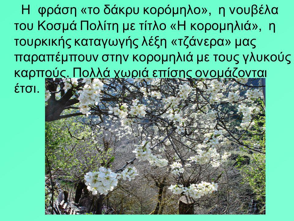 Η φράση «το δάκρυ κορόμηλο», η νουβέλα του Κοσμά Πολίτη με τίτλο «Η κορομηλιά», η τουρκικής καταγωγής λέξη «τζάνερα» μας παραπέμπουν στην κορομηλιά με τους γλυκούς καρπούς.