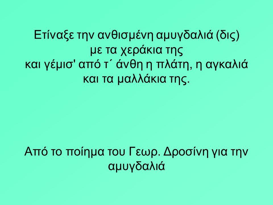 Από το ποίημα του Γεωρ. Δροσίνη για την αμυγδαλιά