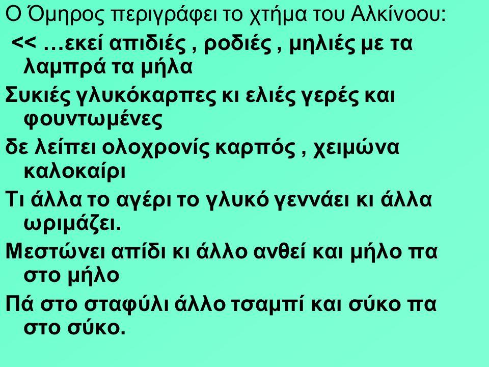 Ο Όμηρος περιγράφει το χτήμα του Αλκίνοου: