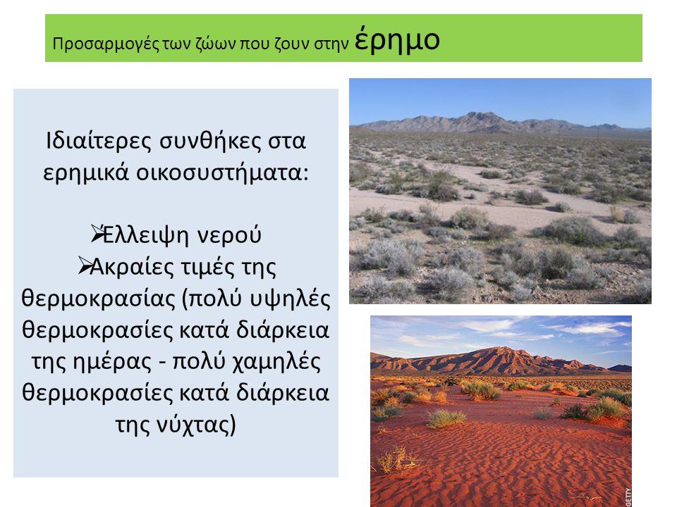 Ιδιαίτερες συνθήκες στα ερημικά οικοσυστήματα: