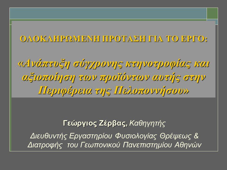 Γεώργιος Ζέρβας, Καθηγητής