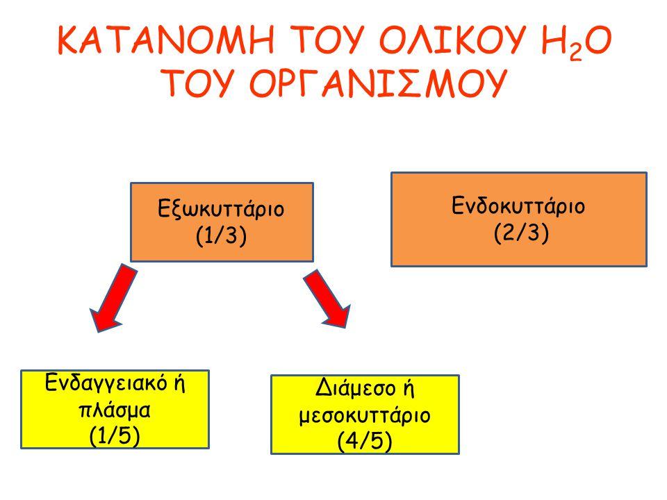 KATANOMH TOY ΟΛΙΚΟΥ H2O ΤΟΥ ΟΡΓΑΝΙΣΜΟΥ