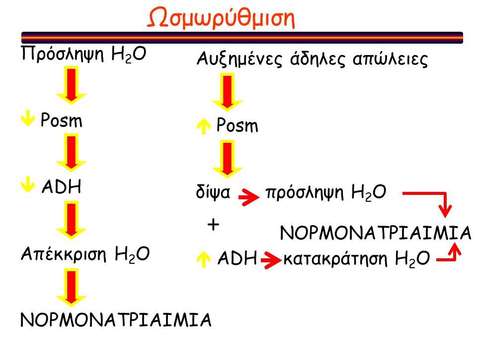 + Ωσμωρύθμιση Πρόσληψη H2O Αυξημένες άδηλες απώλειες  Posm  Posm
