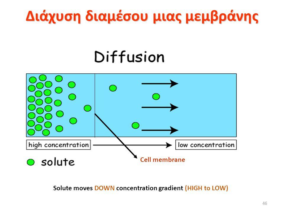 Διάχυση διαμέσου μιας μεμβράνης