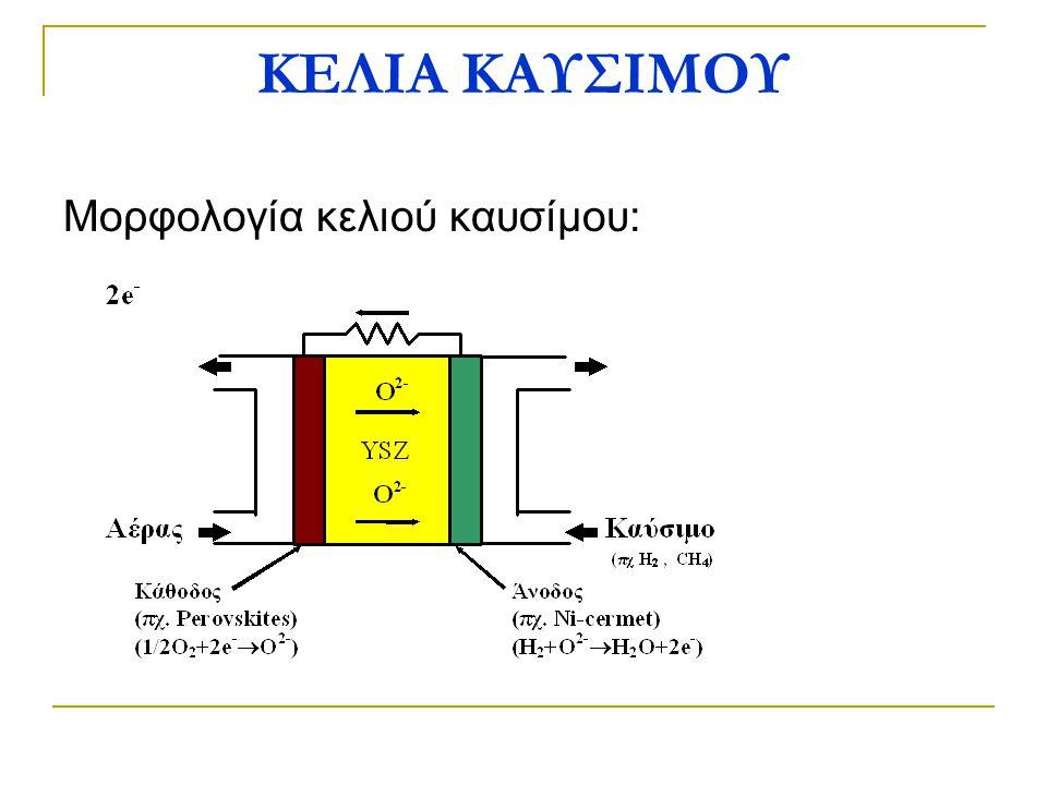 ΚΕΛΙΑ ΚΑΥΣΙΜΟΥ Μορφολογία κελιού καυσίμου: