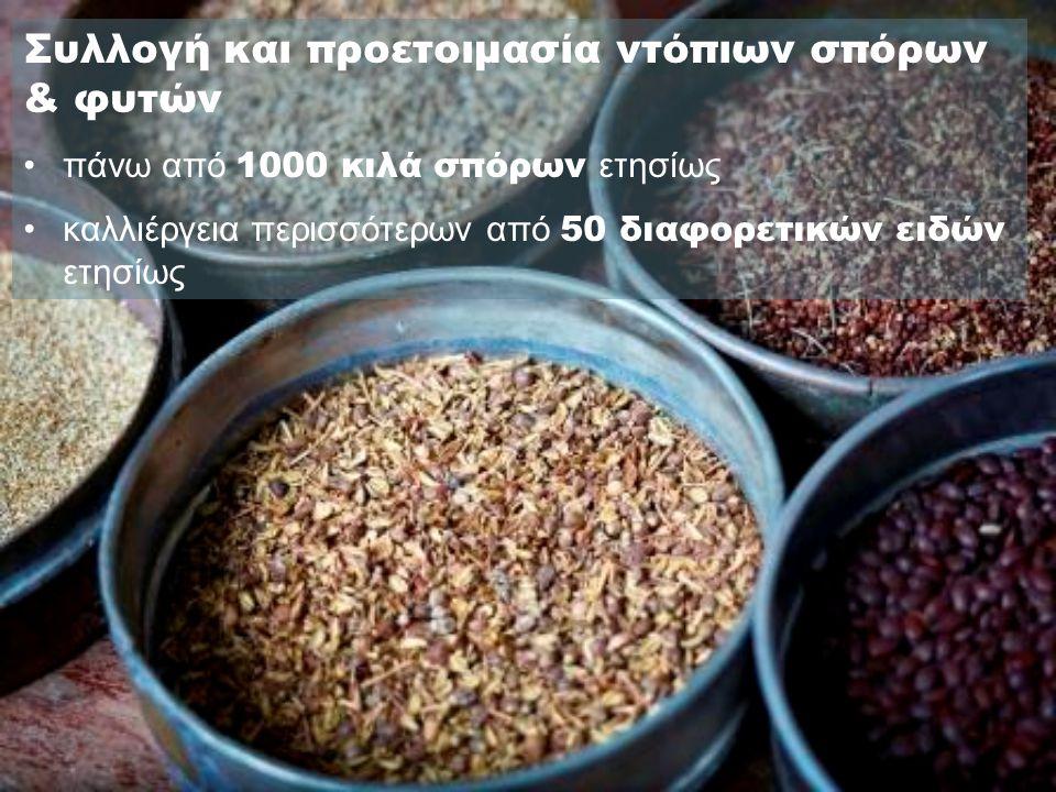 Συλλογή και προετοιμασία ντόπιων σπόρων & φυτών