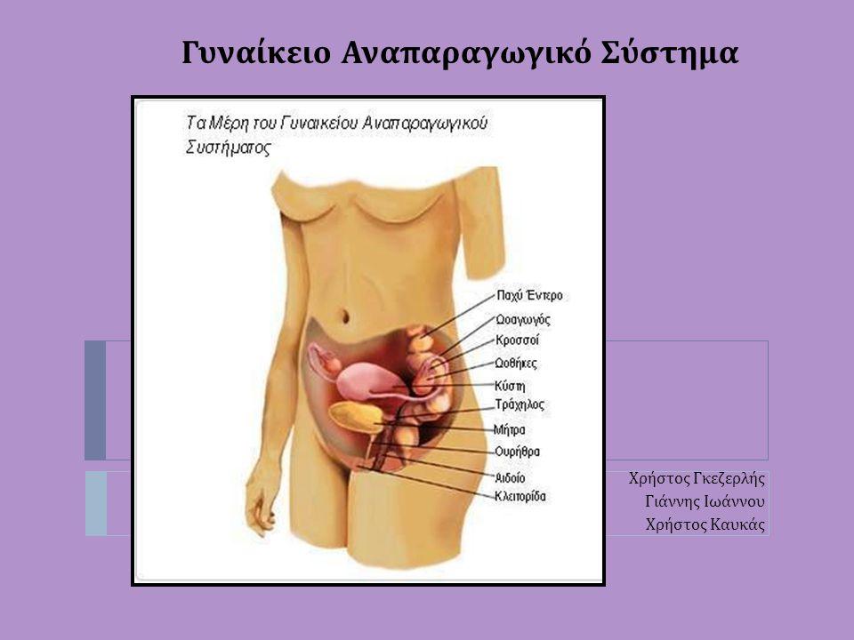 Γυναίκειο Αναπαραγωγικό Σύστημα