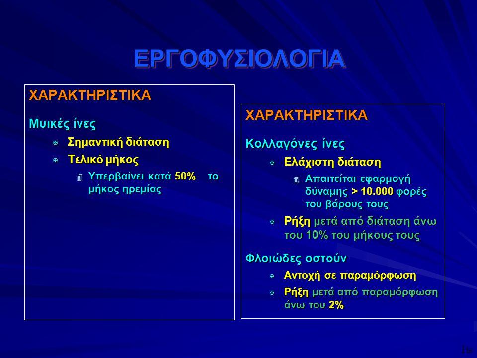 ΕΡΓΟΦΥΣΙΟΛΟΓΙΑ ΧΑΡΑΚΤΗΡΙΣΤΙΚΑ ΧΑΡΑΚΤΗΡΙΣΤΙΚΑ Μυικές ίνες