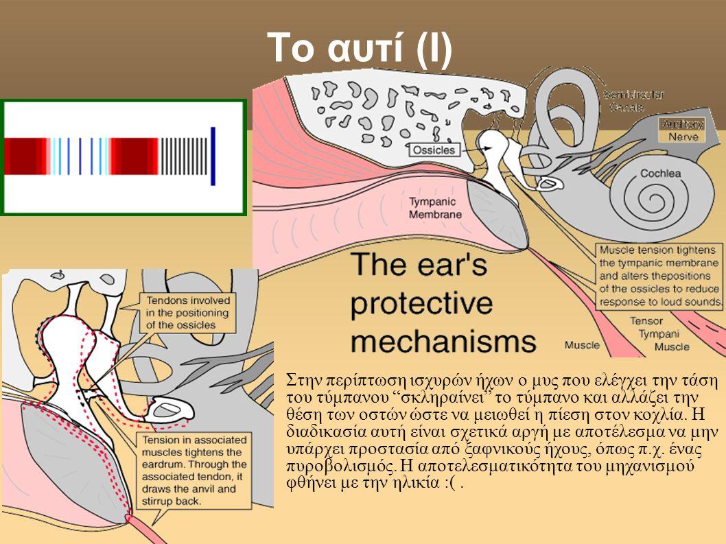 Το αυτί (Ι)