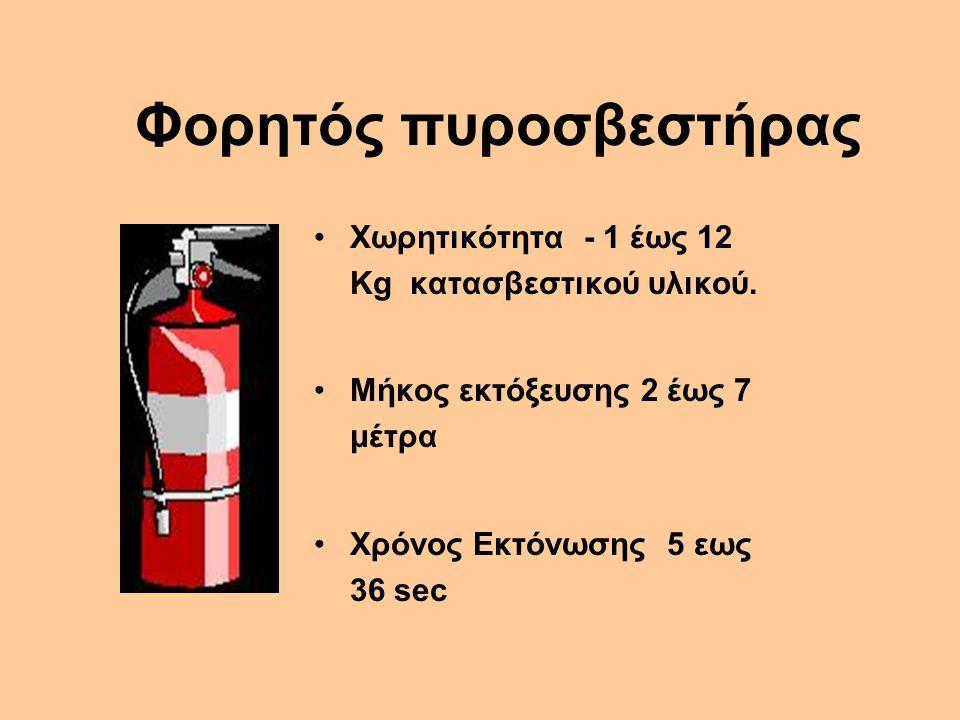 Φορητός πυροσβεστήρας